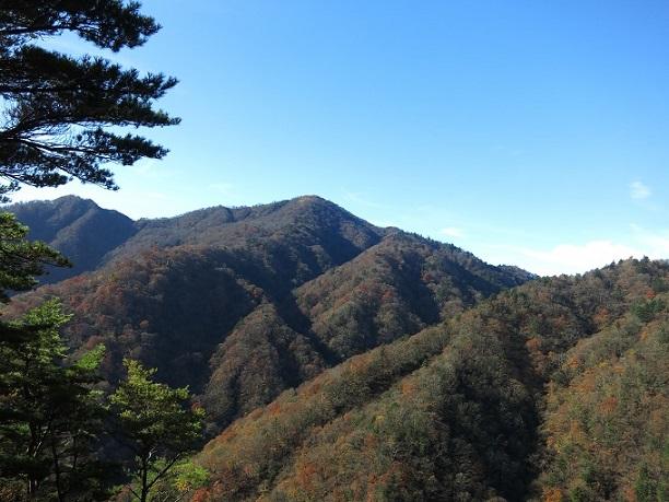 棒ノ木丸から蛭ヶ岳
