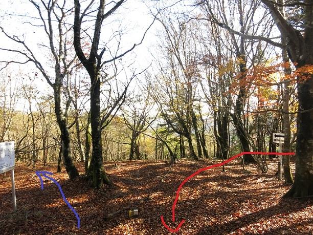 棒ノ木丸山頂付近は尾根が広く分かり難い