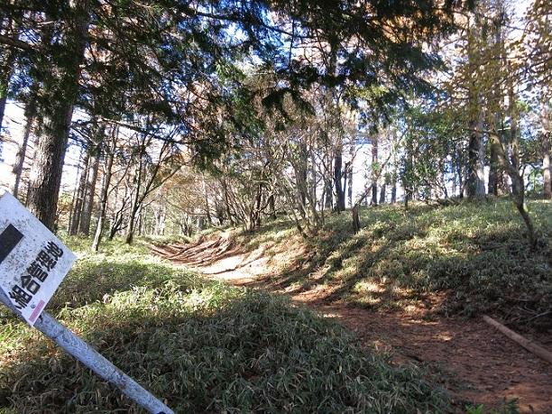 棒ノ木丸から丹沢主脈縦走路と合流