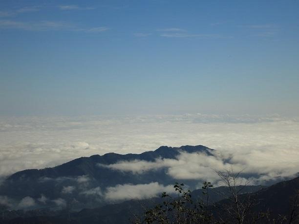 凄い雲海丹沢主脈縦走路