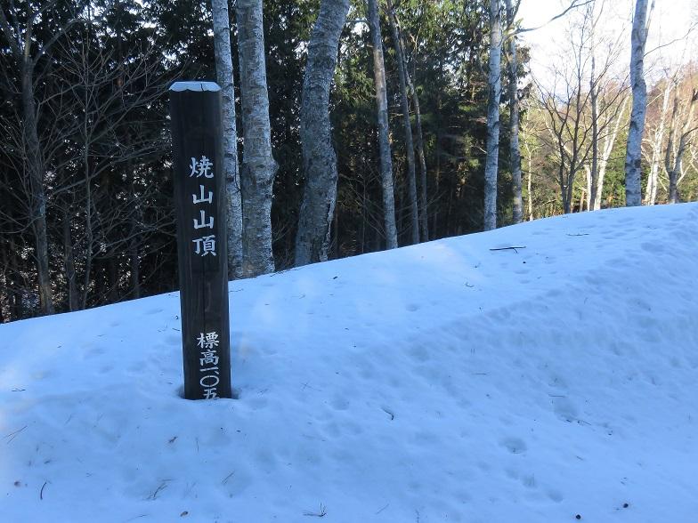 丹沢主脈縦走路の最後のピーク焼山