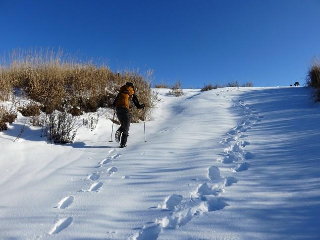 新雪を楽しむ女性