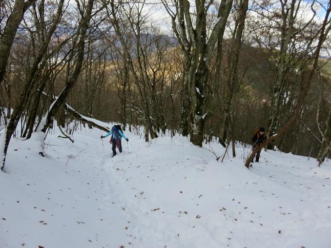 三国山地味にキツイ登り坂が続き