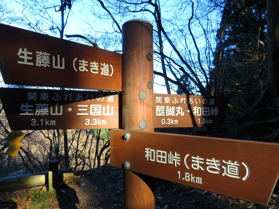 醍醐丸八王子市最高峰