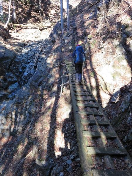 木道がよく滑る