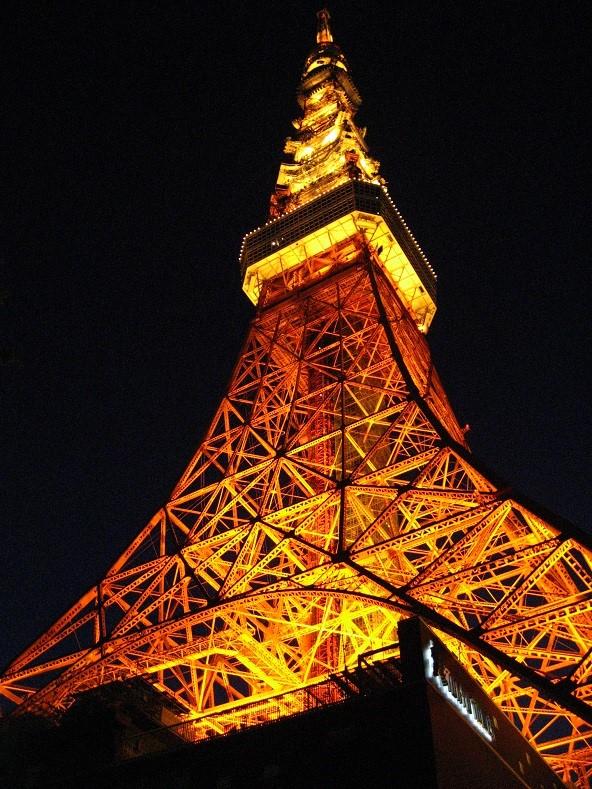 東京タワーの夜景とライトアップされた景色