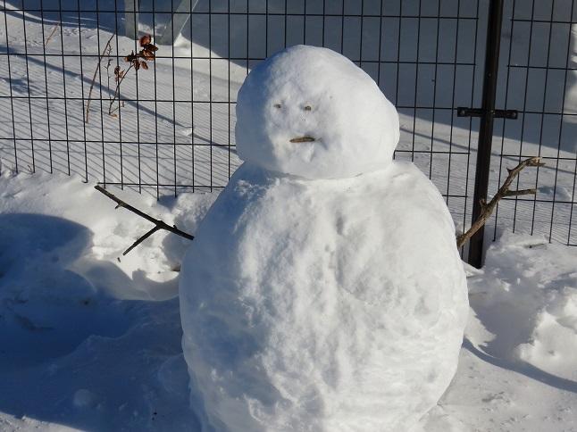 親戚のオジサンにソックリな雪だるま