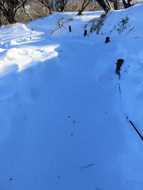 丹沢山雪深い
