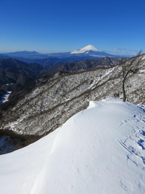 蛭ヶ岳日帰りコース富士山がとても綺麗