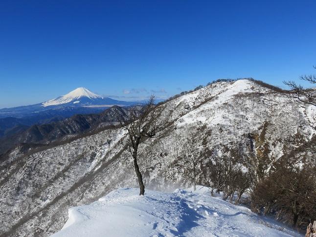 蛭ヶ岳日帰り厳しい積雪