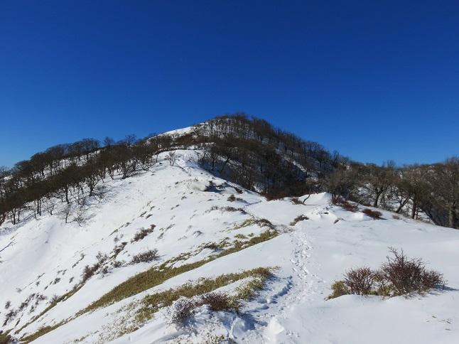 本格的な雪道