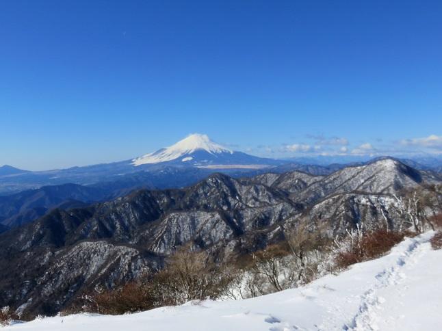 丹沢主脈縦走路から富士山の眺め