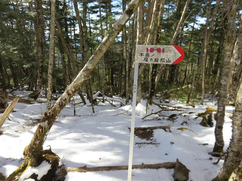 黒岳・小金沢連嶺の縦走路