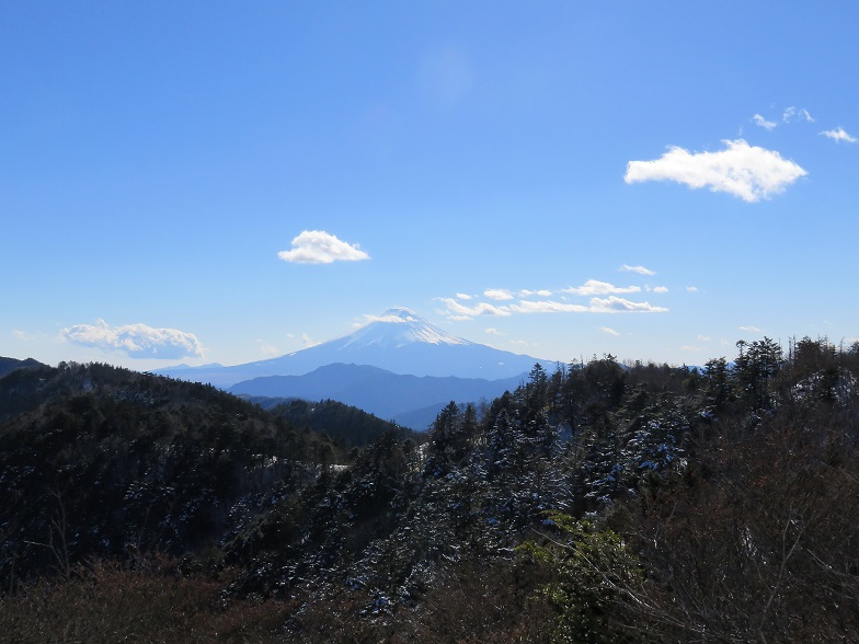 小金沢山山頂富士山景色