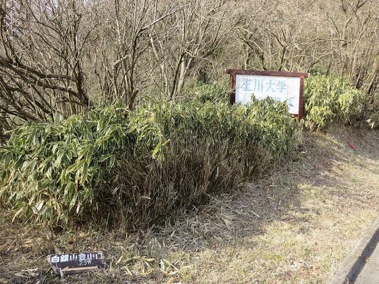 玉川大学の看板と白銀山登山口