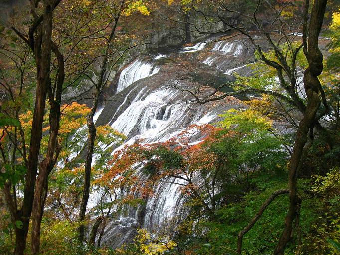 袋田の紅葉のコントラスト滝