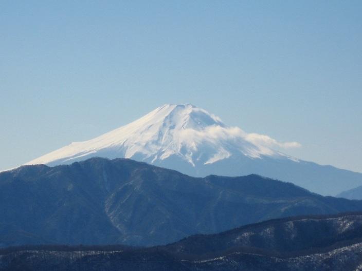 奥武蔵武からの富士山