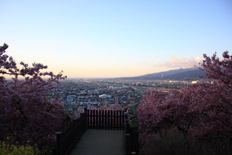 松田ハーブガーデン朝日が出る前