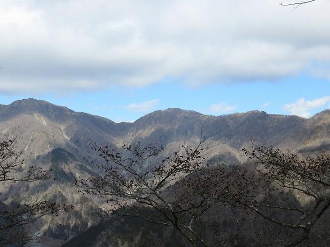 鍋割山蛭ヶ岳方面の景色