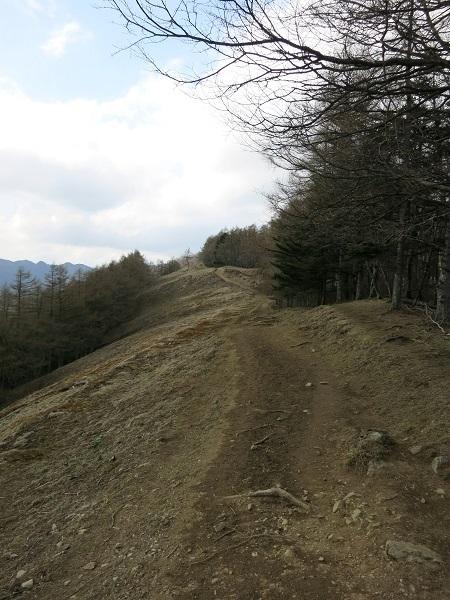 七ッ石山から雲取山への稜線
