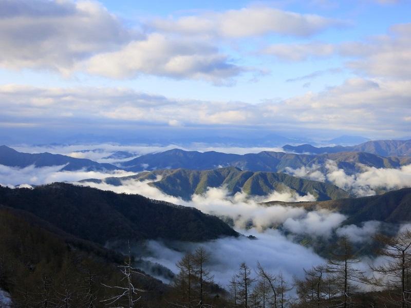 雲取山の雲海