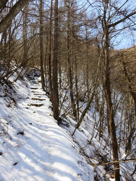 御前山登山道の様子