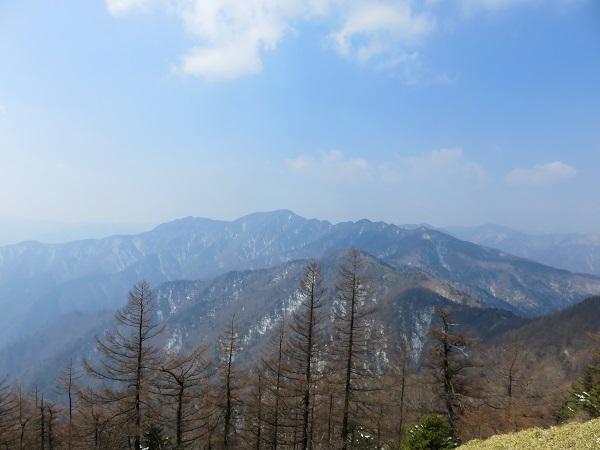野陣尾根(富田新道)からの富士山