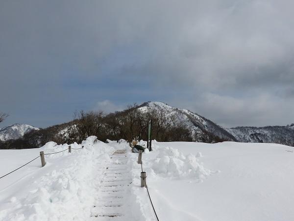 目指す塔ノ岳