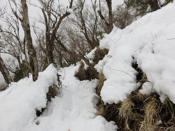 小丸尾根も雪