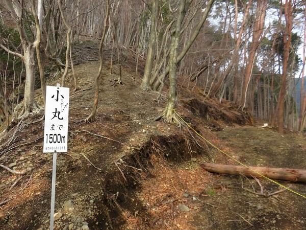 林道の所にある小丸尾根(訓練尾根)看板