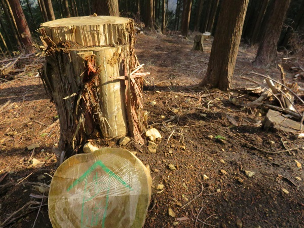 林道が交錯していて非常に分かり難い道迷いからの遭難注意所