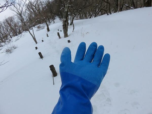 雪が積もった山テムレス防寒手袋