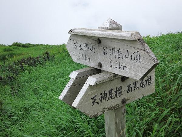 谷川連峰主脈縦走路の始まり分岐