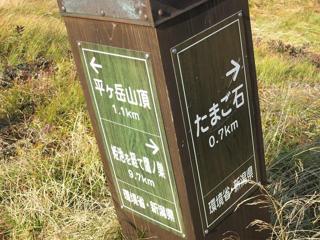 平ヶ岳とたまご石の分岐