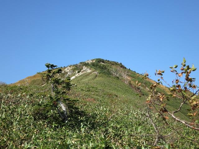 池ノ岳笹の急登