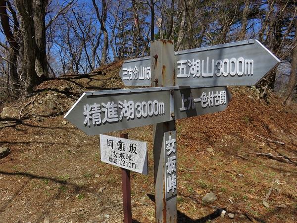 阿難坂三方分山・五湖山のコルにあたる所
