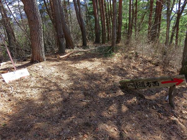 新八林道への分岐