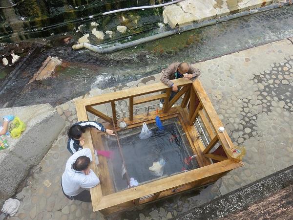 温泉の源泉熱を使った調理場