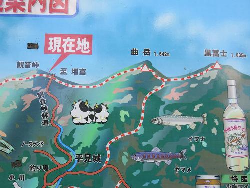 観音峠からう曲岳・黒富士・太刀岡山・羅漢寺山登山コース