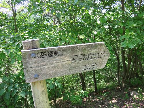 草加沢林道を使って金桜神社コース