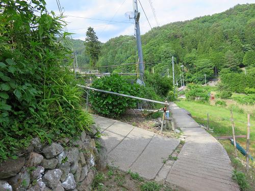 羅漢寺山周辺民家の近くに出ました