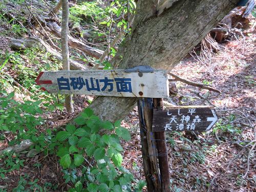 白砂山から羅漢寺山最高峰弥三郎岳遠望