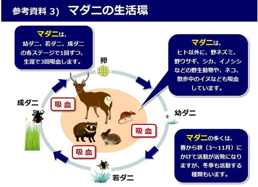 SFTS(ダニ媒介感染症)の感染地域