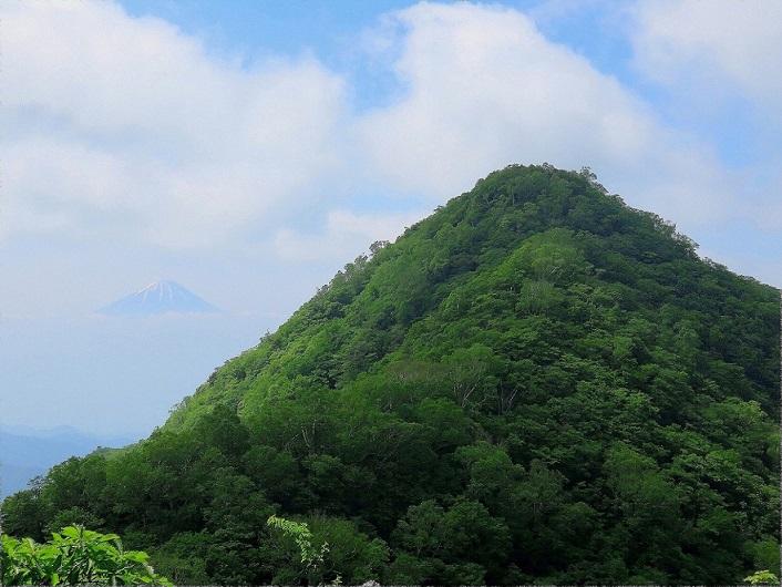 ヤマハック金ヶ岳方面から茅ヶ岳を撮影
