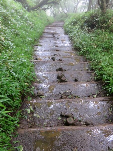 泥んこ登山道