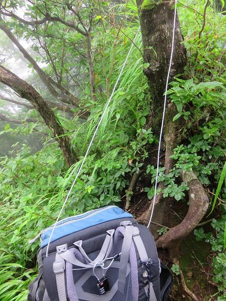 ワイヤーを使ってザックを木に括り付けてロック