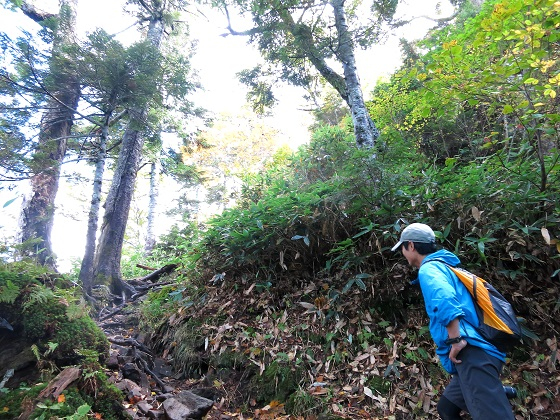 武尊山への登山口