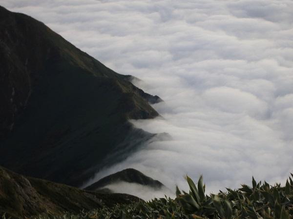 谷川岳の稜線がダムのように雲海を堰き止め