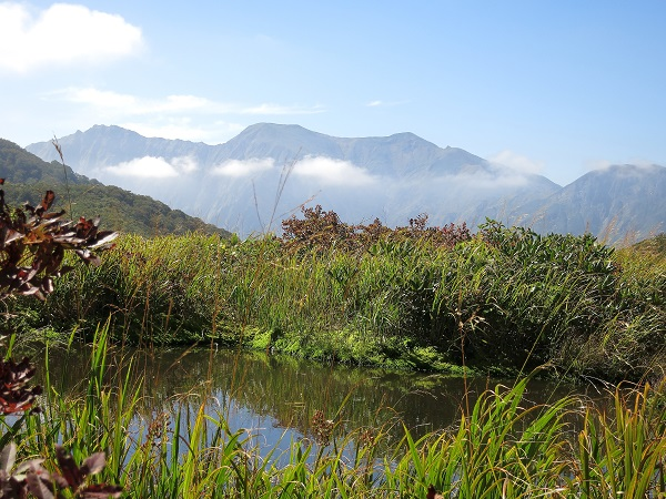 池塘越しの谷川岳
