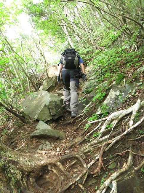 毛無山登山口から急登